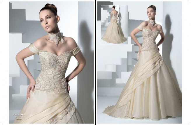 2010 Current Trends Wedding Dress Picture 1 Wedding