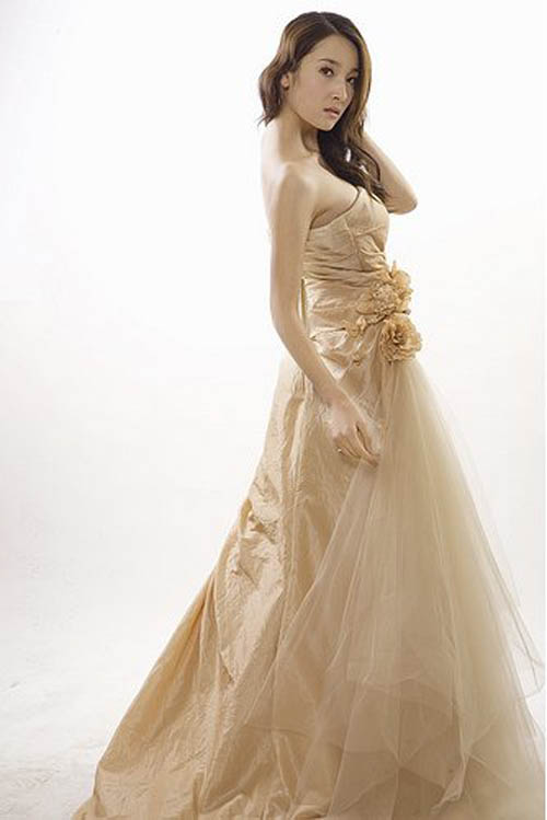 2010 White Chocolate Wedding Dress Idea Picture 4
