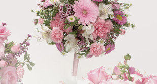 Carnation wedding bucket